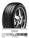 ER300