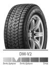 DM-V2
